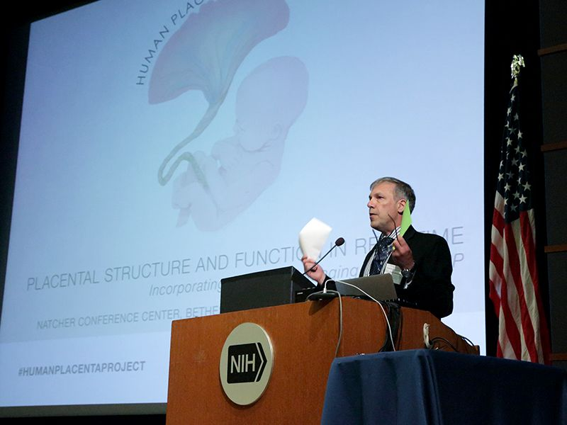 David Weinberg, Ph.D., project lead for the Human Placenta Project, addressed the crowd of researchers on the project's progress.